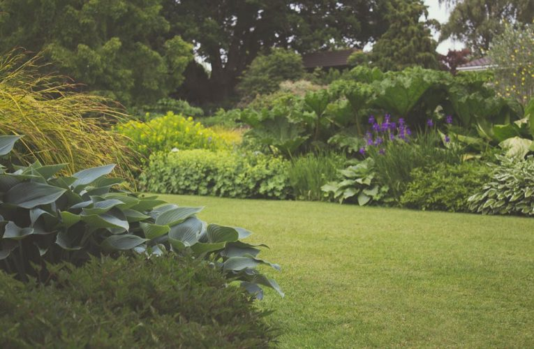 Six Important Qualities to Look for in a Landscaping Adelaide Company
